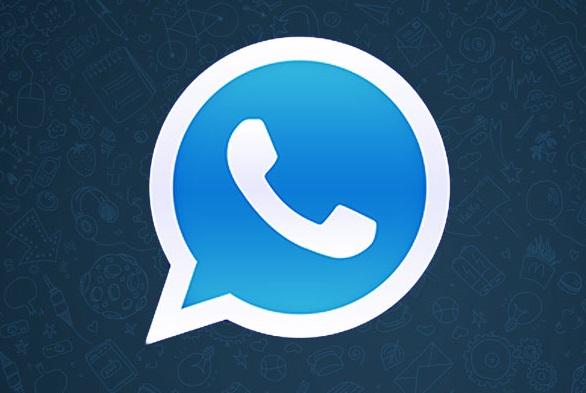 actulizar whatsapp holo